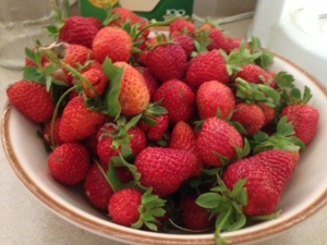 Strawberries 2014