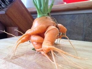 freak carrot