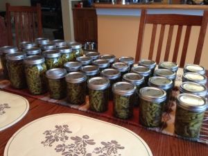 Canning Beans 2014
